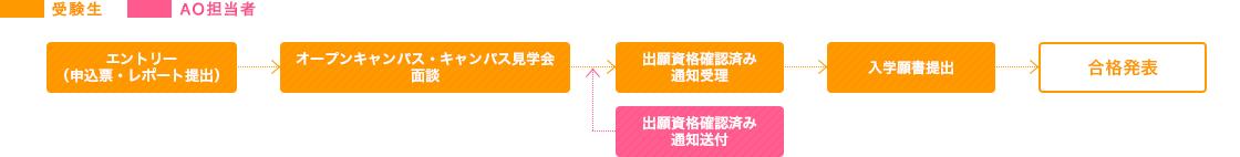 AO入試流れ図